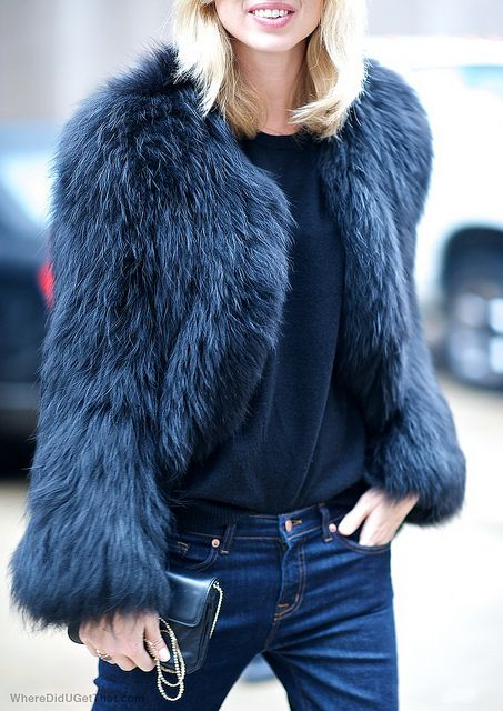 Indigo and fur